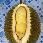 durian season 150x150 Best in Bangkok: Sticky Rice and Durian at Loong Peeak (ลุงเปี๊ยก)