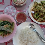 Day 18 Vegetarian Thai Food: Suki Haeng, Broccoli and Cauliflower