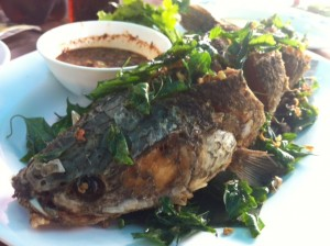 This fish came to save the day, covered in deep fried basil.