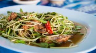 sunflower-sprouts-chiang-rai