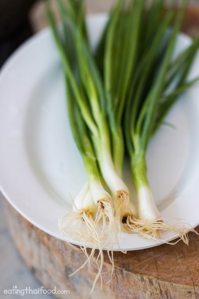 Thai green onions