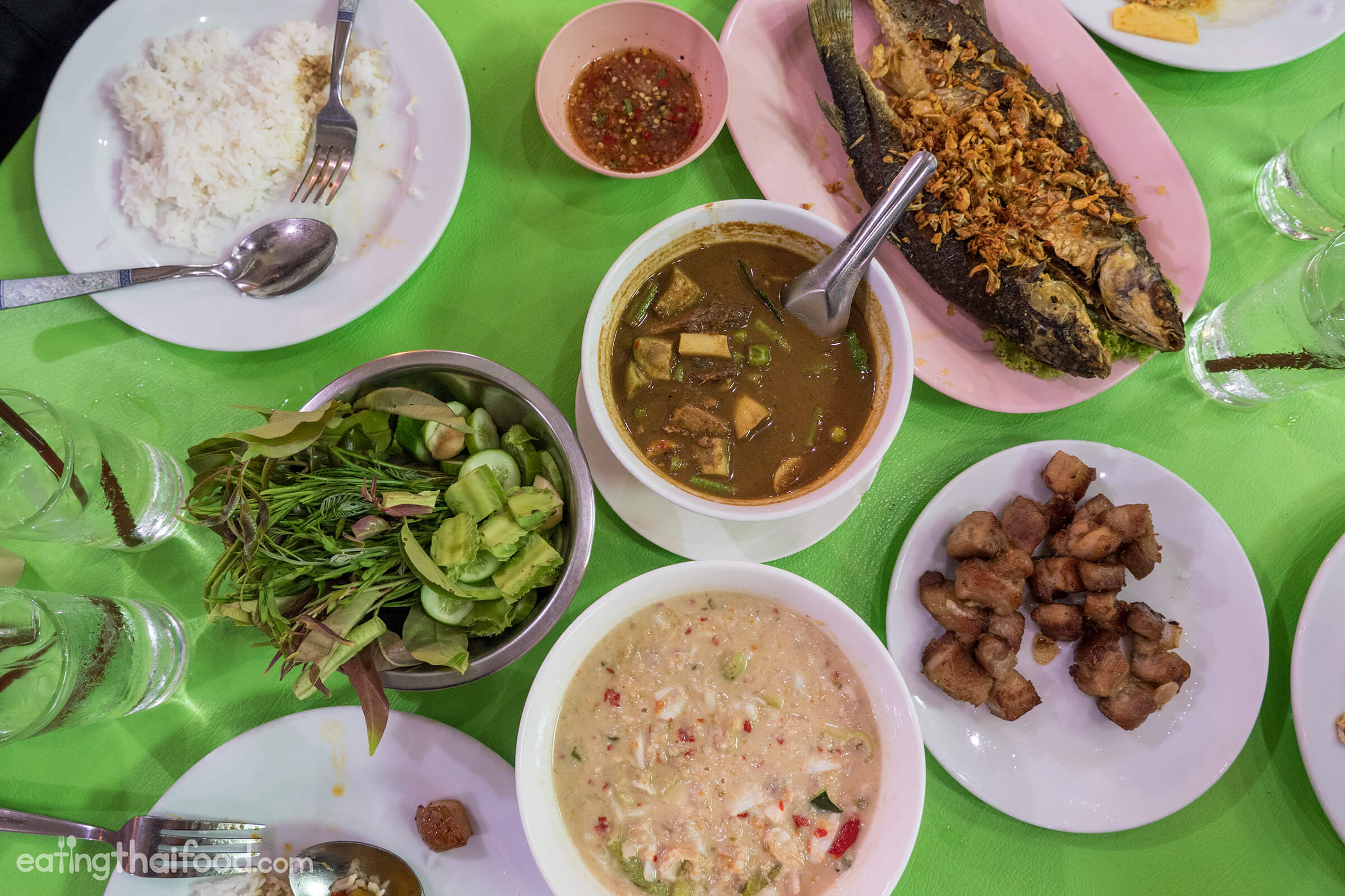 Cat Food In Bangkok