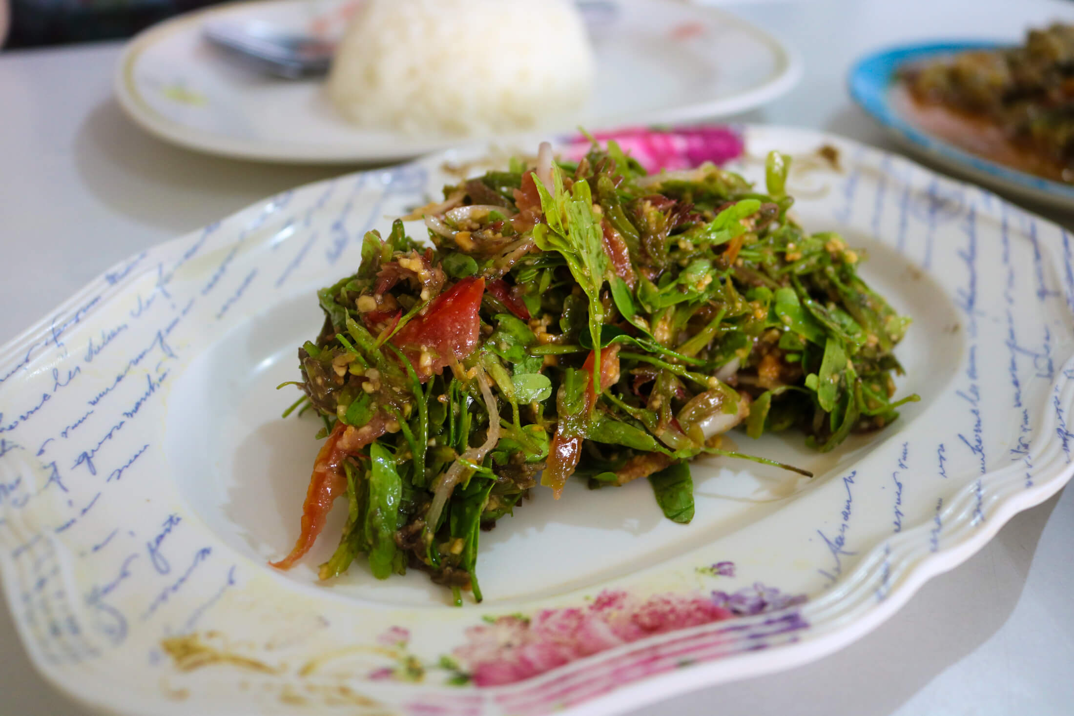Where your salad dreams just come to life, Burmese Food in Chiang Mai